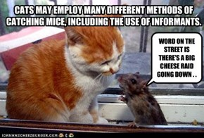 CATS MAY EMPLOY MANY DIFFERENT METHODS OF CATCHING MICE, INCLUDING THE USE OF INFORMANTS.
