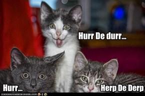 Derp Kittens