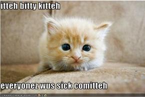 itteh bitty kitteh  everyonez wus sick comitteh