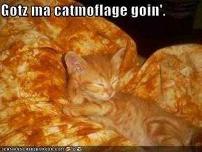Gotz ma catmoflage goin'.