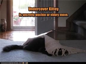 Undercover Kittey