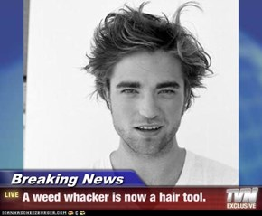 Breaking News - A weed whacker is now a hair tool.
