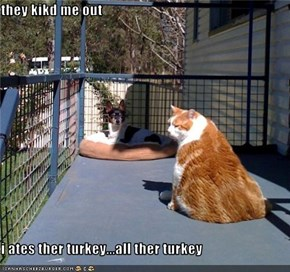 they kikd me out  i ates ther turkey...all ther turkey