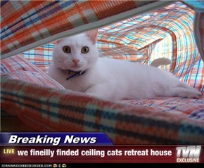 Breaking News - we fineilly finded ceiling cats retreat house