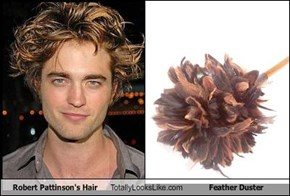 Robert Pattinson's Hair Totally Looks Like Feather Duster