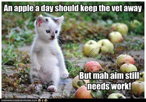An apple a day should keep the vet away