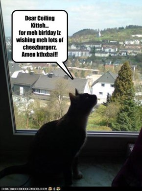 Birfday Wish