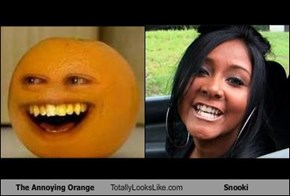 The Annoying Orange Totally Looks Like Snooki