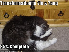 Transformation to Yin & Yang  35% Complete