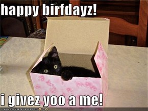happy birfdayz!  i givez yoo a me!