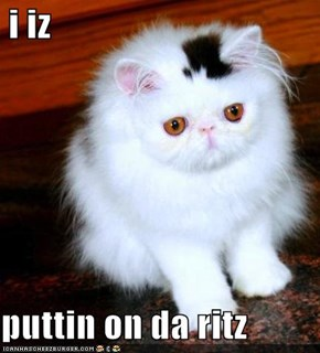 i iz  puttin on da ritz