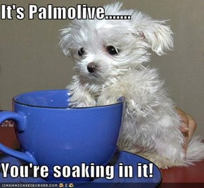 It's Palmolive.......  You're soaking in it!
