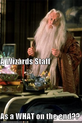 A Wizards Staff  As a WHAT on the end??