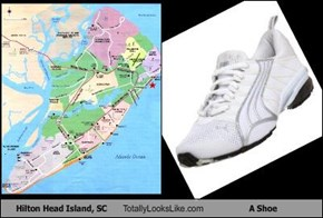 Hilton Head Island, SC Totally Looks Like A Shoe