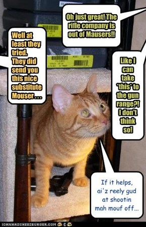 Fully Automatic Sarcastic Cat... Deadly!