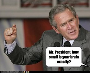 Mr. President, how small is your brain exactly?
