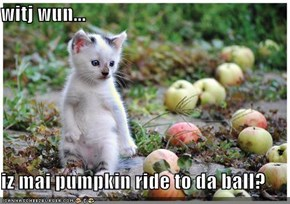 witj wun...  iz mai pumpkin ride to da ball?
