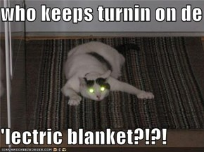 who keeps turnin on de  'lectric blanket?!?!