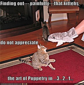 Finding out--- painfully---that kittehs  do not appreciate  the art of Puppetry in ...3...2...1...