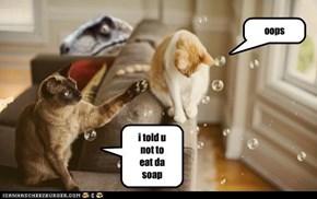 i told u not to eat da            soap