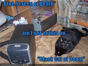 """Blue Screen of Death""   ain't got nuthin on ""Black Cat of Doom"""