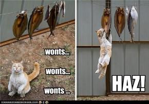 wonts...   wonts...   wonts ...