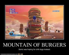 MOUNTAIN OF BURGERS