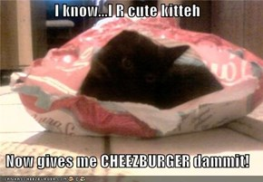 I know...I R cute kitteh   Now gives me CHEEZBURGER dammit!