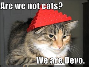 Are we not cats?  We are Devo.
