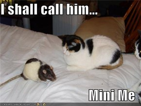 I shall call him...  Mini Me