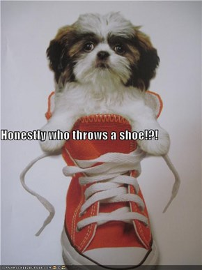 Honestly who throws a shoe!?!