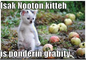 Isak Nooton kitteh  is ponderin grabity