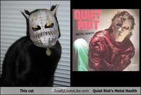 This cat Totally Looks Like Quiet Riot's Metal Health