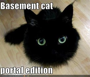 Basement cat  portal edition