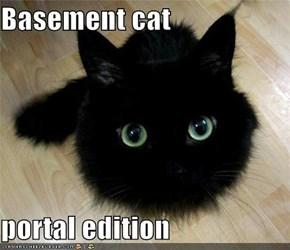 Basement cat  portal edition