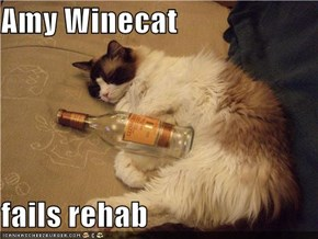 Amy Winecat  fails rehab