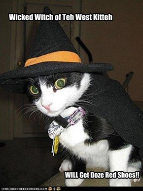 Wicked Witch of Teh West Kitteh