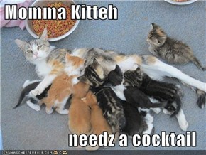 Momma Kitteh  needz a cocktail