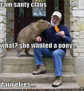 i am santy claus what? she wanted a pony darn elves....