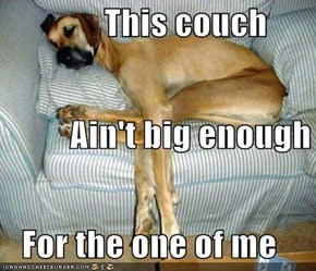 This couch           Ain't big enough    For the one of me
