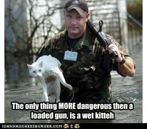The only thing MORE dangerous then a loaded gun, is a wet kitteh