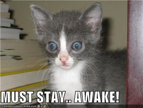 MUST STAY.. AWAKE!