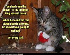 "Tony had seen the movie ""IT"" by Stephen King several times.  When he found the red clown nose in the yard, he knew it was  going to get bad.  very very bad."