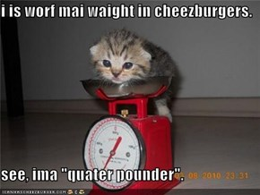 "i is worf mai waight in cheezburgers.  see, ima ""quater pounder""."