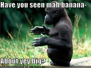 Have you seen mah banana-  About yey big?