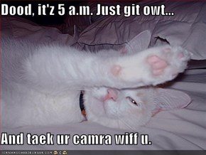 Dood, it'z 5 a.m. Just git owt...  And taek ur camra wiff u.