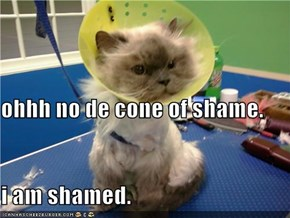 ohhh no de cone of shame. i am shamed.