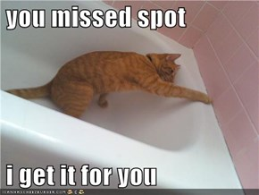 you missed spot   i get it for you