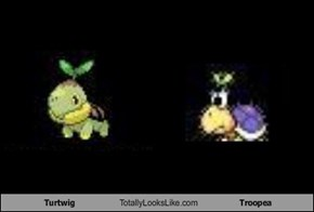 Turtwig Totally Looks Like Troopea