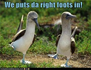 We puts da right foots in!